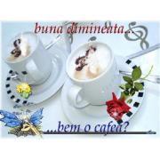Cafea boabe si consumabile pentru automate de cafea de la Sc Alisor-Dam Srl