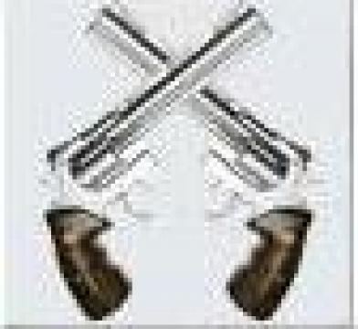 Aviz psihologic pentru permis port-arma de la Tihan & Asociatii