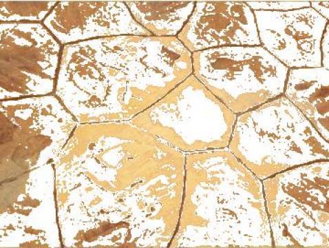 Beton amprentat piatra iregulara de la Geopav 2008 Srl.