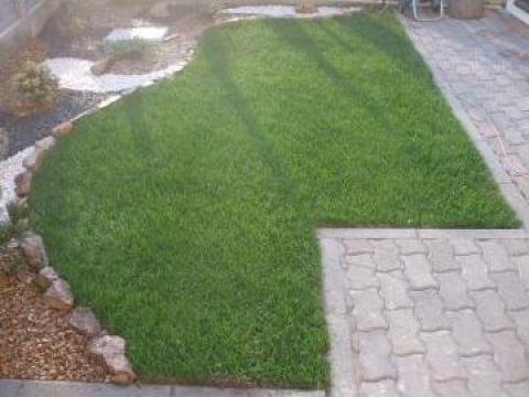 Gazon rulou la curte de la Garden Rustic Spatii Verzi