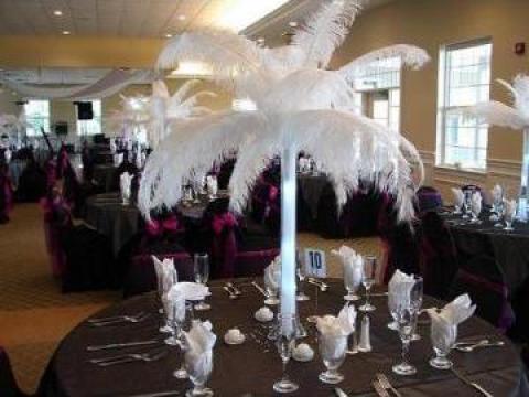 Pene De Strut Pentru Organizari Nunta Bucuresti Select Event Id