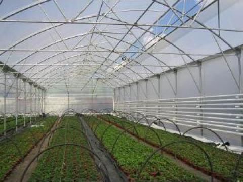 Folie solar, folie mulch sisteme de irigatii de la Eurodrip Irrigation Systems