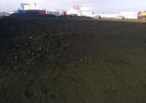 Pamant negru gazon de la As Construct Srl