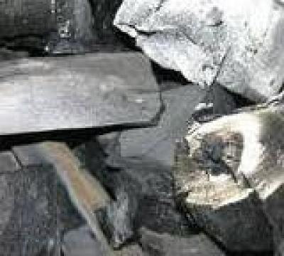 Carbune de lemn de la Unimex International