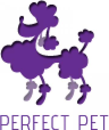Servicii de frizerie si cosmetica canina bucuresti for A perfect pet salon
