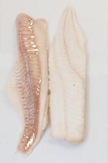 File de peste congelat Cod Gadus Morhua de la Expert Factor Foods Srl