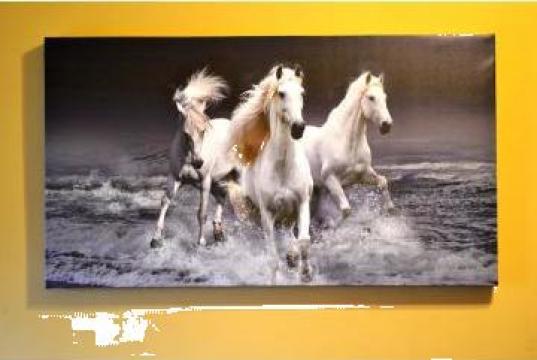 Tablou canvas pe sasiu de la Frameart Decor Srl.
