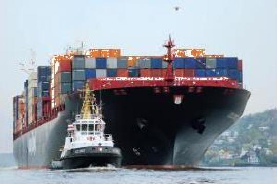Import marfa Asia