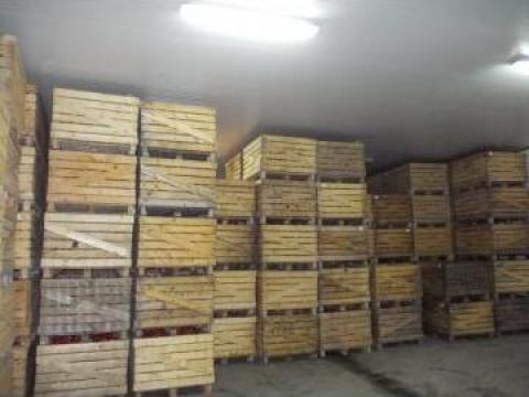 Camera pastrare fructe - mere 50 tone de la Konstal Sisteme