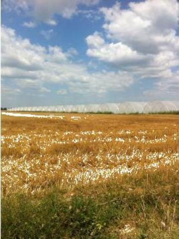 Solarii profesionale cu ventilatie pe capete de la Imd Horticulture Systems Srl