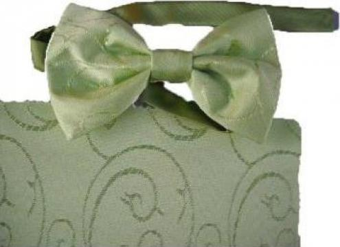 Papion verde cu model de la Johnny Srl.