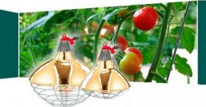 Lampa infrarosu incalzire solar sau ferme pui de la Agro Kit Solarii Srl