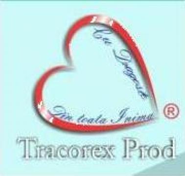 Coperti PVC pentru carti speciale de la Tracorex Prod SRL