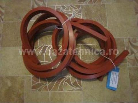Cauciuc siliconic rosu de la Baza Tehnica Alfa Srl