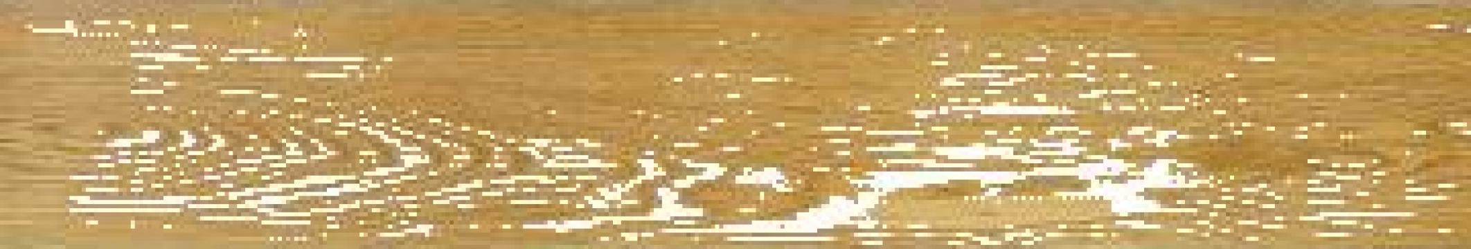 Placi linoleum Plank PVC autoadezive 152 x 914 x 1.5mm de la A-Med S.r.l.