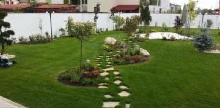 Amenajari spatii verzi la casa de la SC Art Garden Design Service SRL
