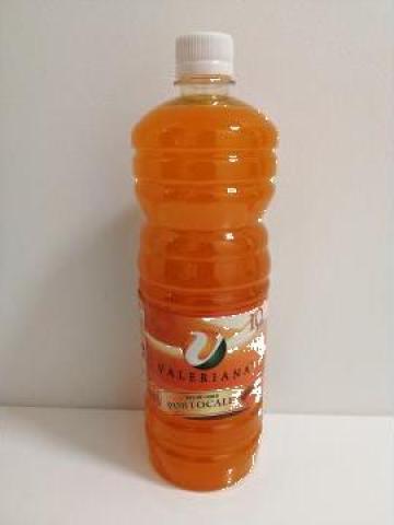 Sirop pentru granita 1 litru portocale de la Cristian Food Industry Srl.