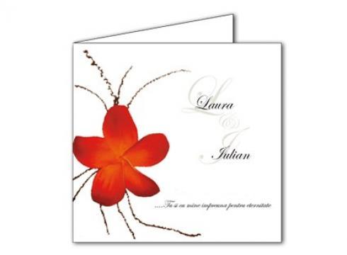 Invitatii de nunta personalizate INVN002 de la Apia Prest Srl