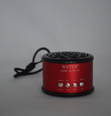 Boxa portabila Wster WS-216
