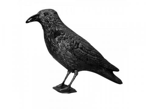 Sperietoare pasari - Corb