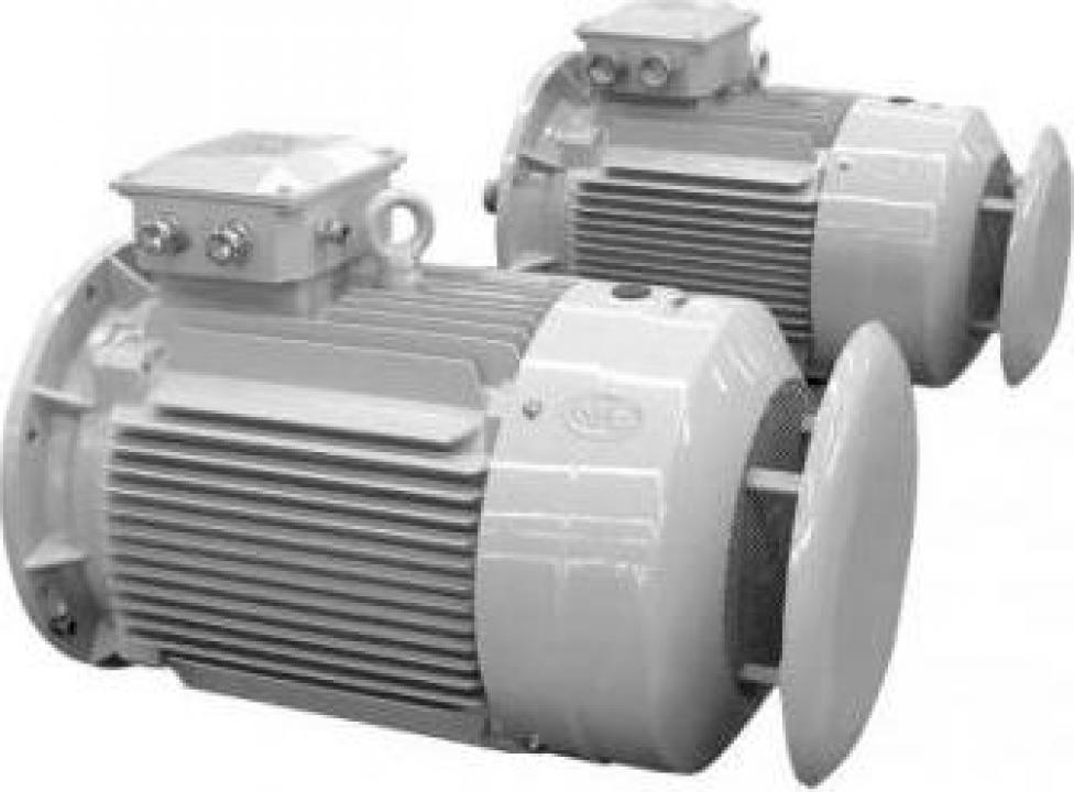Motoare electrice trifazate standard